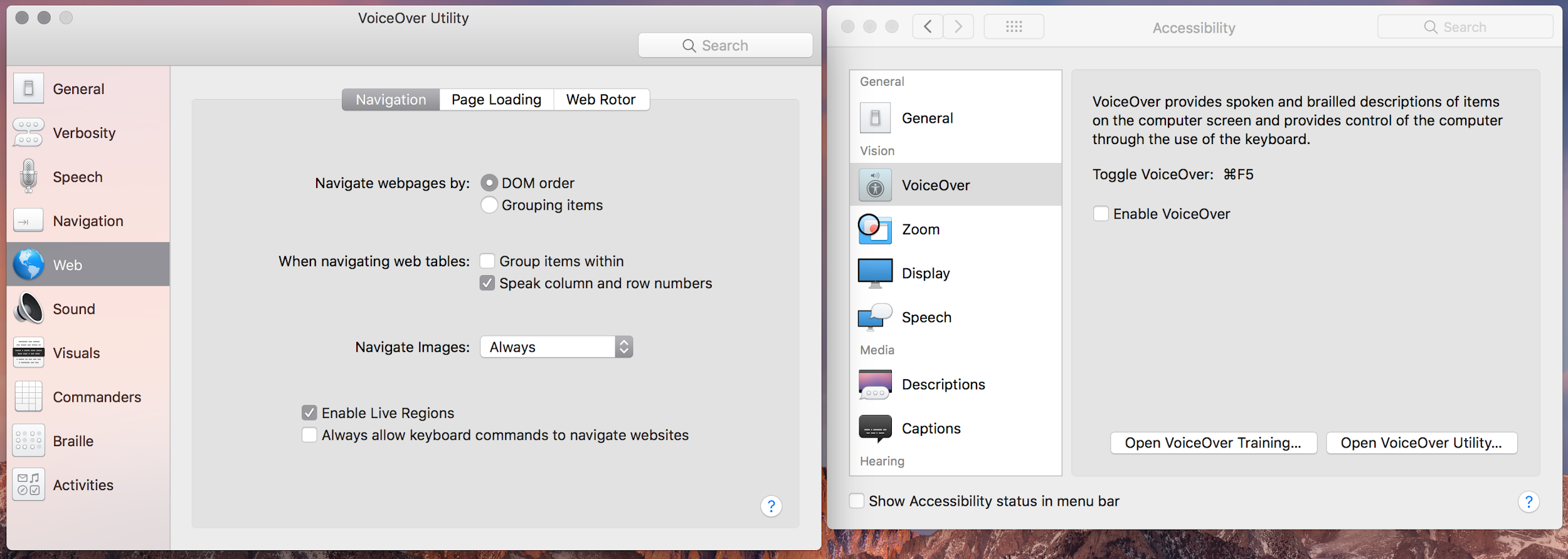 Voiceover for Mac allows web accessibility for blind users.
