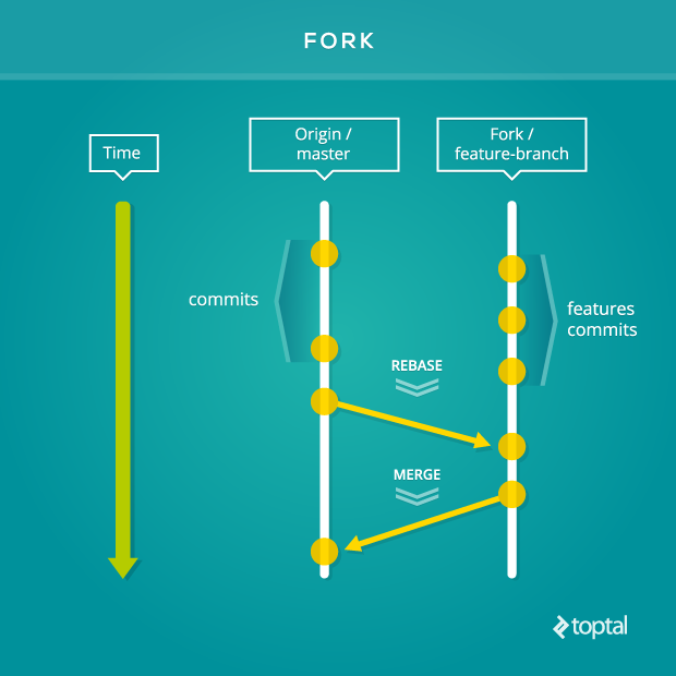 The fork facilitates collaboration in your software development team's Git workflow.