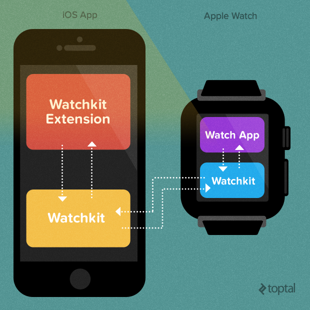Understanding the way an Apple Watch interacts with other iOS apps on the iPhone is integral to being a successful Apple Watch developer.