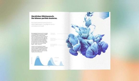 Bosch Information Graphics Development