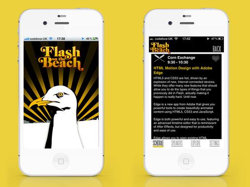 Flash on the Beach