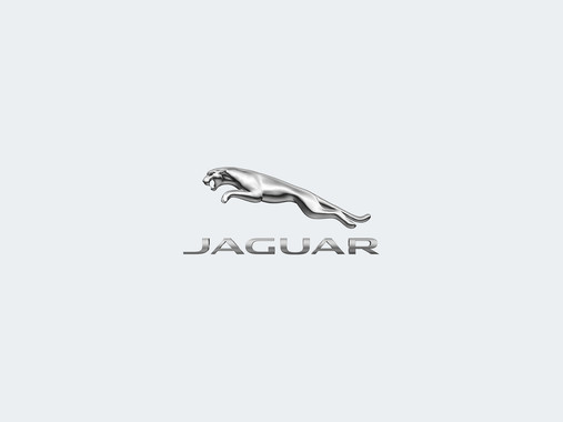 Assorted Jaguar Campaigns