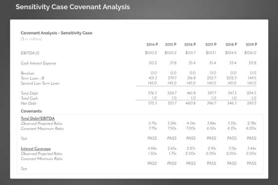Solvency Analysis