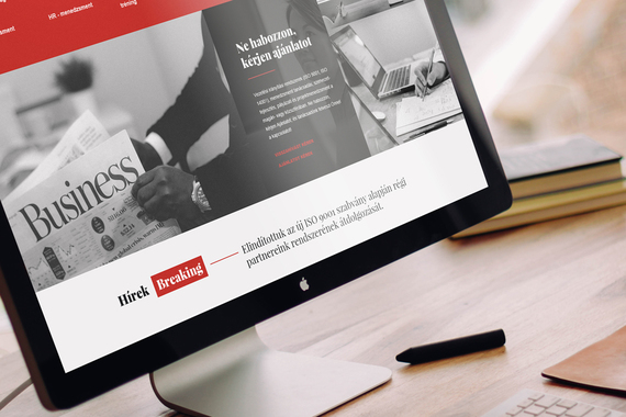 Controll Holding | Responsive Website Concept