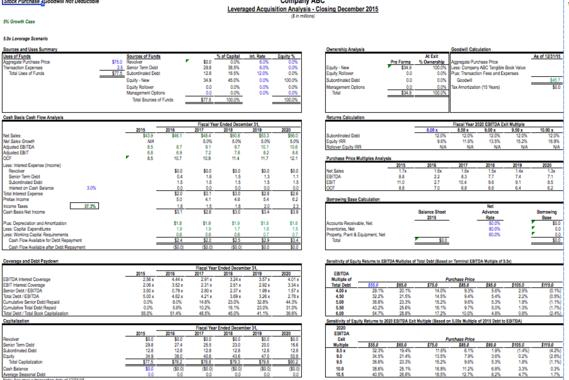 LBO & DCF Valuation Modeling