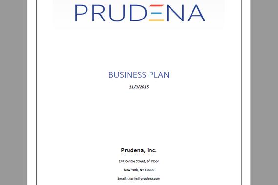 Prudena Business Plan