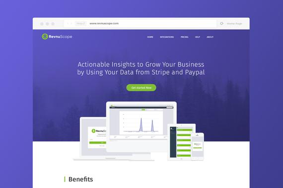 RevnuScope Analytics Identity/Website Design