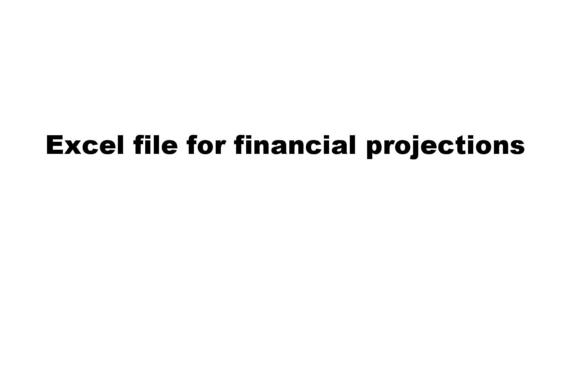 Excel Files for Projections for the Delivery System.