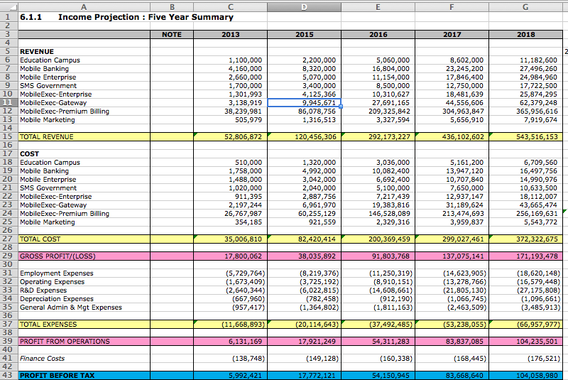 Financial Projections for Fundraising