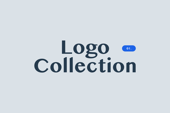 Logo and Brand Identity Design Projects