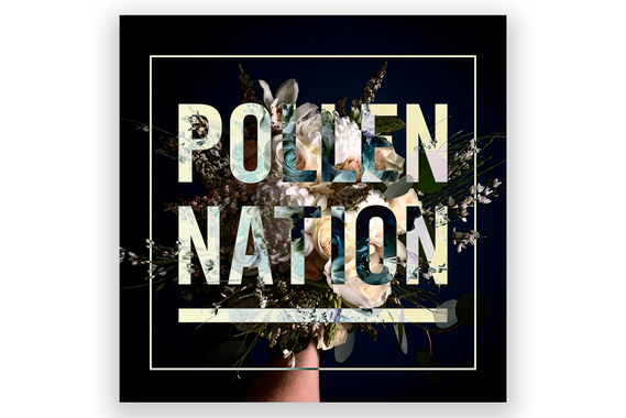 Pollen Nation Website