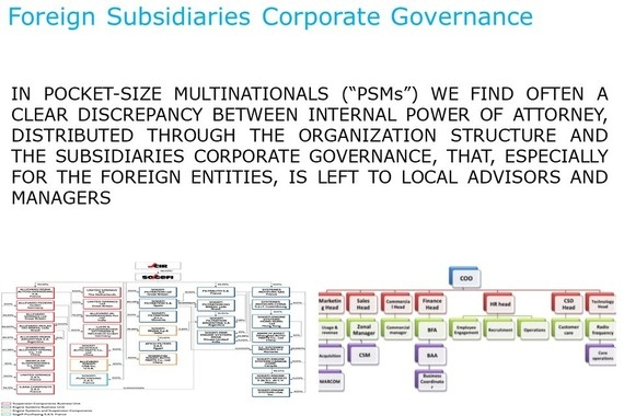 Corporate Governance for Foreign Subsidiaries