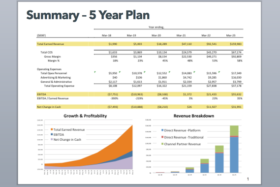 Venture Capital Raise Investor Presentation