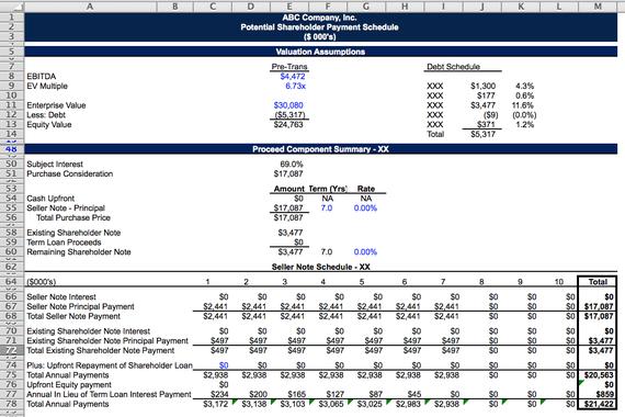 Shareholder Buyout Model