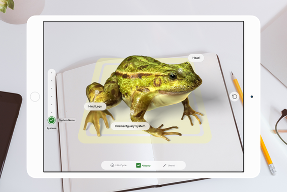 FroggiPedia Augmented Reality Education App