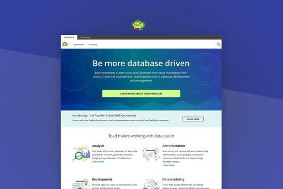 SaaS Product Website MVP