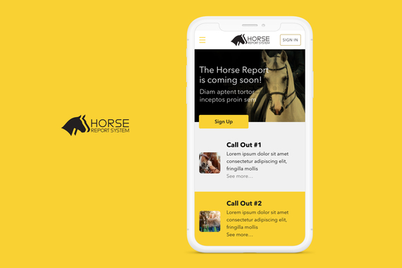 The Horse Report Web App Visual Design and UX Improvements