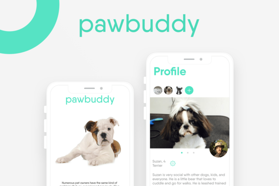 Pawbuddy App
