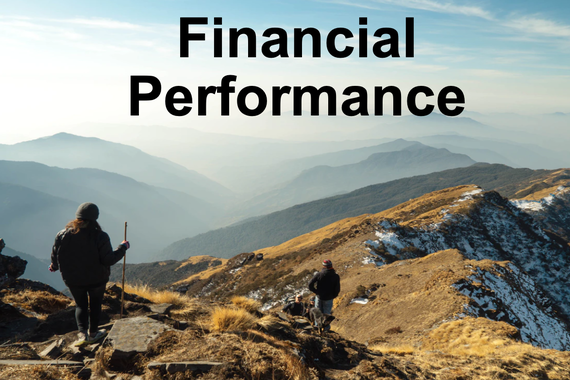 Financial Performance Overview for Startups
