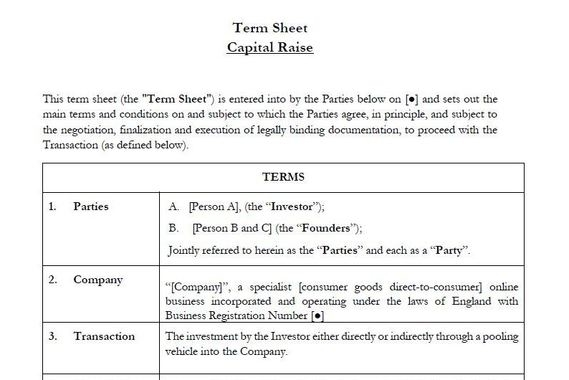 Term Sheet for a Capital Raise