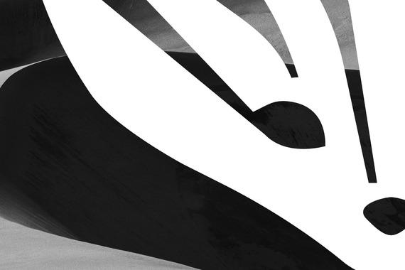 Fennec Sport | Brand Identity Design