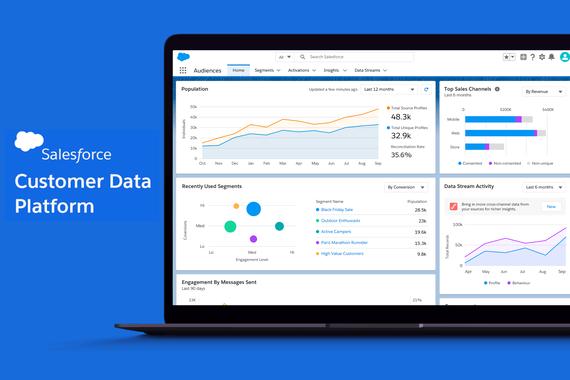 Salesforce Customer 360 Audiences