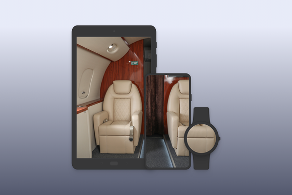 System of Mobile and Smartwatch Apps for Interacting with Private Jets