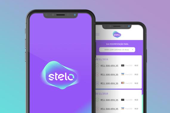 Stelo Machine Reports