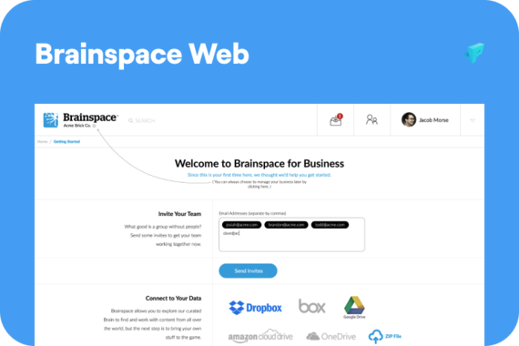 Brainspace Web - Machine Learning Content Discovery Platform
