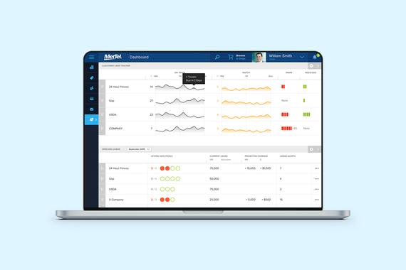 Bruin Cloud-based Platform for MetTel