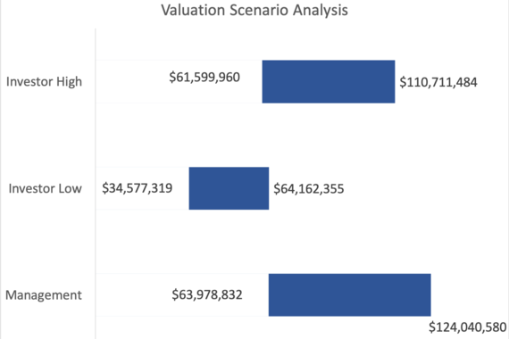 DCF & Impact Valuation for ESG Growth Equity Investment
