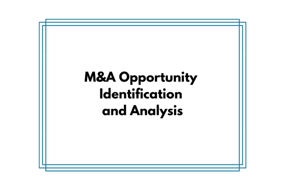 Investment Banking Pitch Regarding an M&A Opportunity
