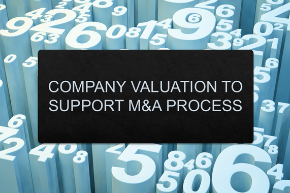 Company Valuation to Support M&A Process