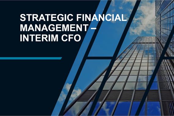 Strategic Financial Management | Interim CFO