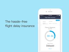 The Flight Delay Insurance