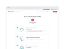 Datamolino WordPress Site