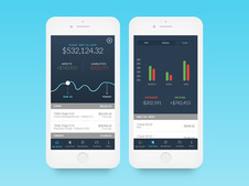 Wela Financial App
