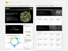 Product Design Lead & Senior UX Designer - Deloitte Consulting