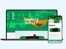 eCommerce Website for Hammock Company