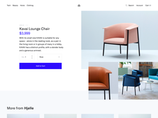 eCommerce Site | Web Design and Branding