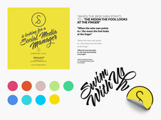 Swimming Pool | Content Creation and Visual Design