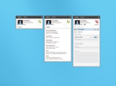 CRM-tied Telephone Desktop Application for Analysts