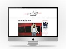 Stradivarius Blog Concept
