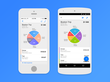 iOS and Android Expense Tracker App