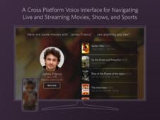 Fan TV Conversational Voice Interface